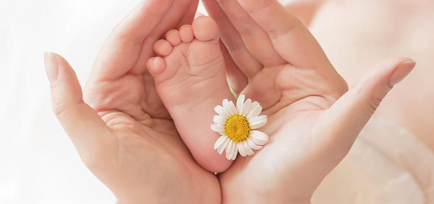 Les huiles essentielles qui ne sont pas dangereuses pour bébé