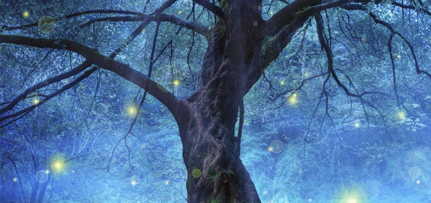 Les orbes, messagers de la nature