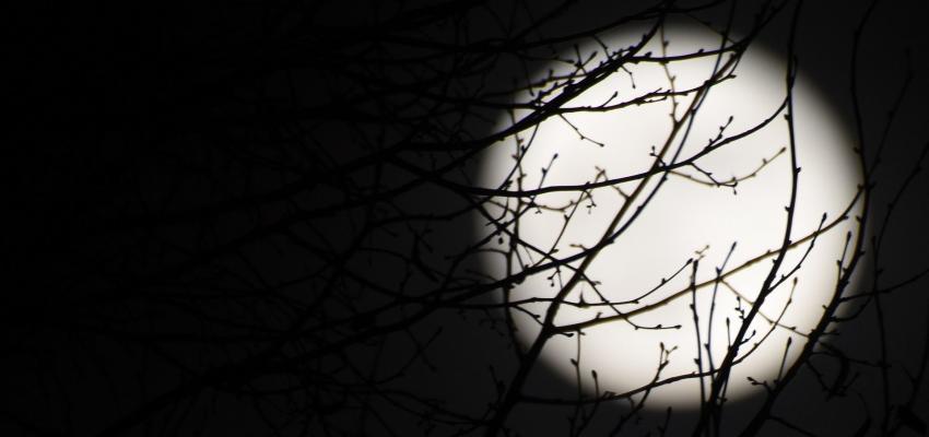 Est-il vrai que la naissance des bébés pendant la pleine lune est accrue ?