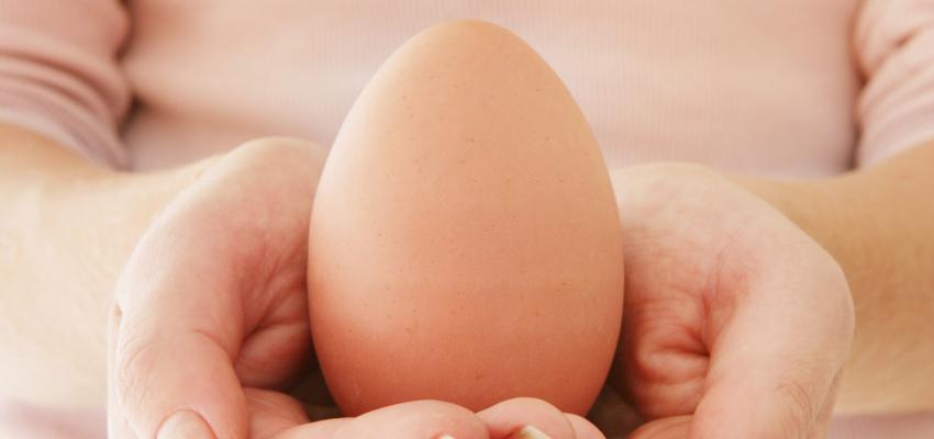 Nettoyer son karma avec un œuf