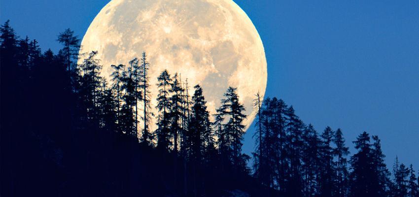 Oracle de Belline : les Lames gouvernées par la Lune
