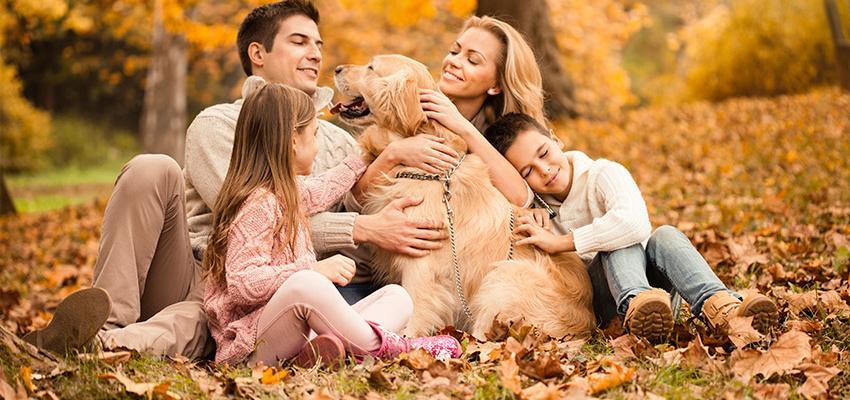 7 pierres de protection pour la famille