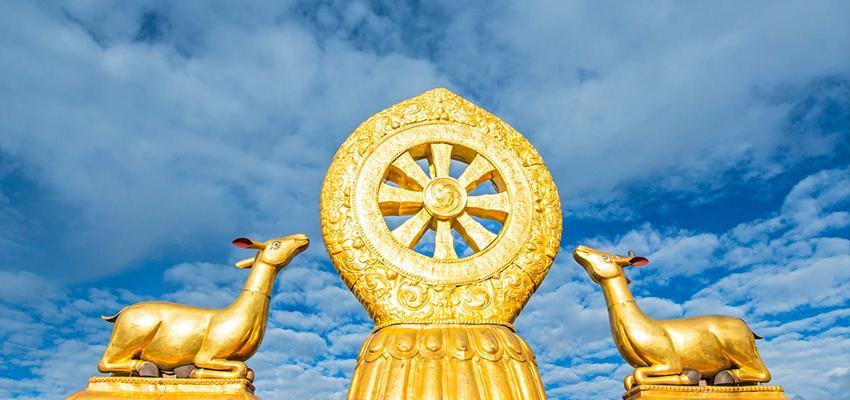 Qu'est-ce que le dharma et pourquoi le pratiquer ?