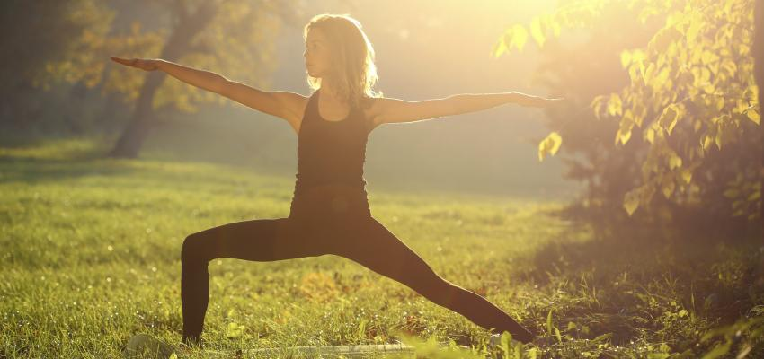 La pratique du raja yoga