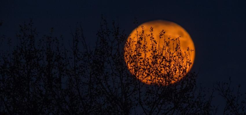 Rituel pour chaque lune – Comment profiter de ces phases lunaires