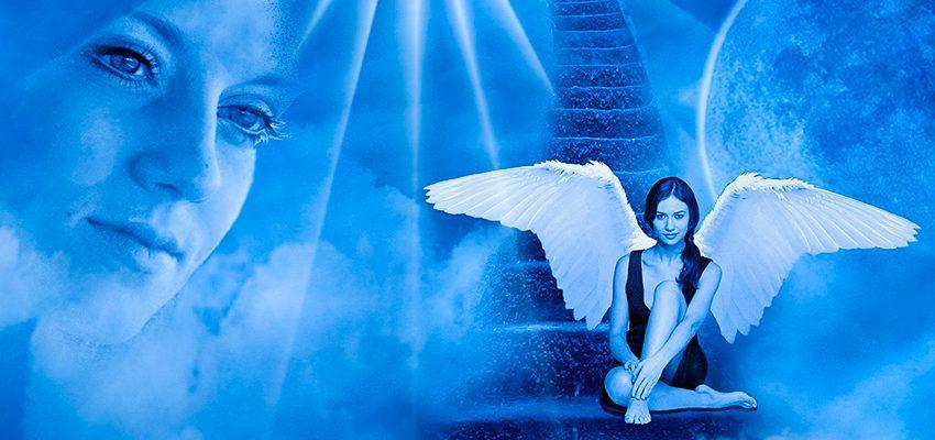 Rencontre avec un ange gardien