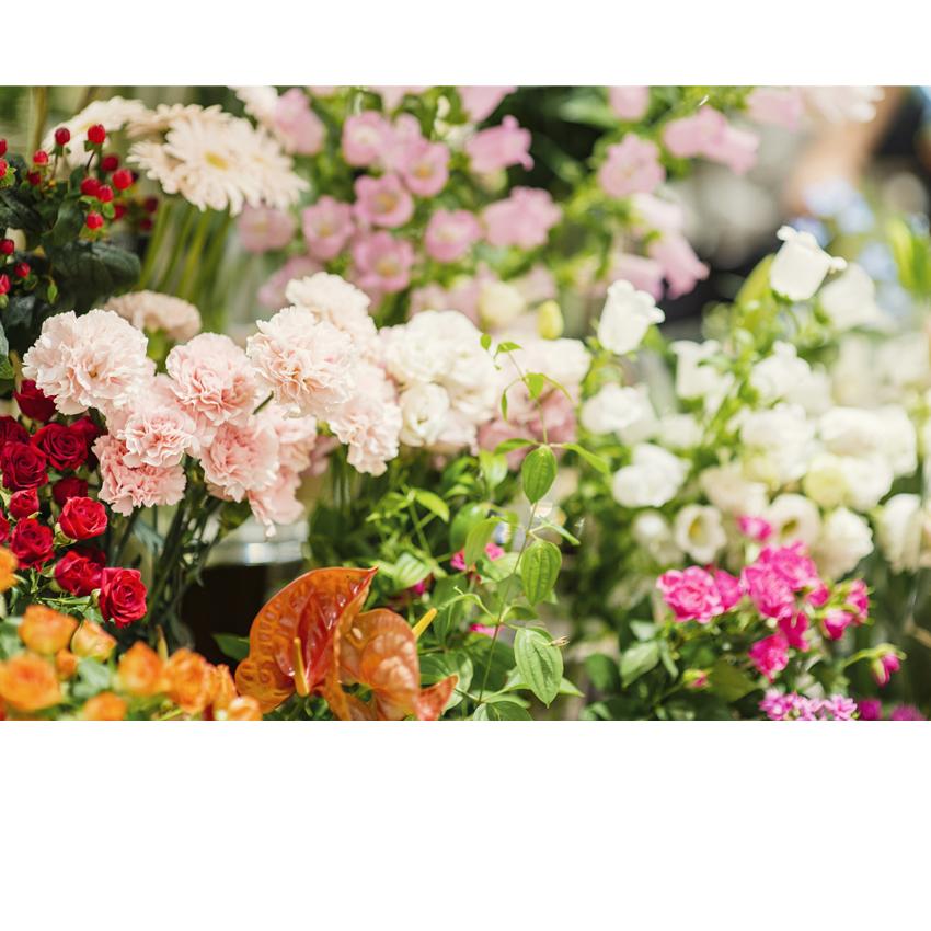 Comment choisir le bon bouquet de fleur gr ce au signe astrologique - Comment choisir le bon tapis de salon ...