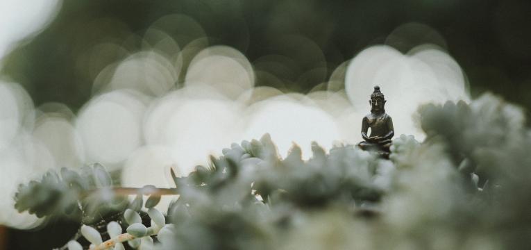 les principes du Bouddhisme