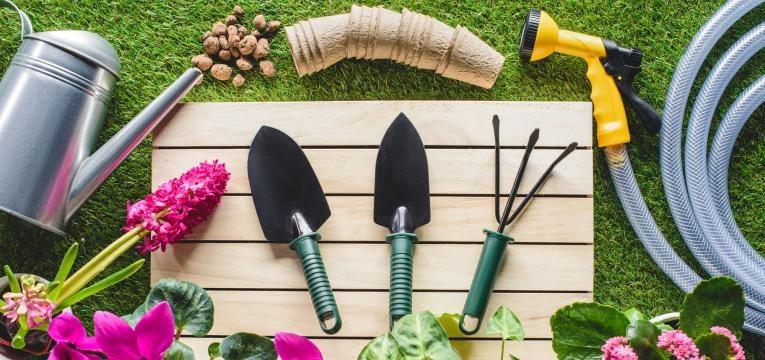 Comment jardiner avec la lune en 2020