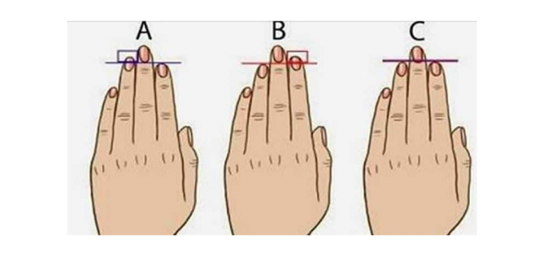 longueur de doigts
