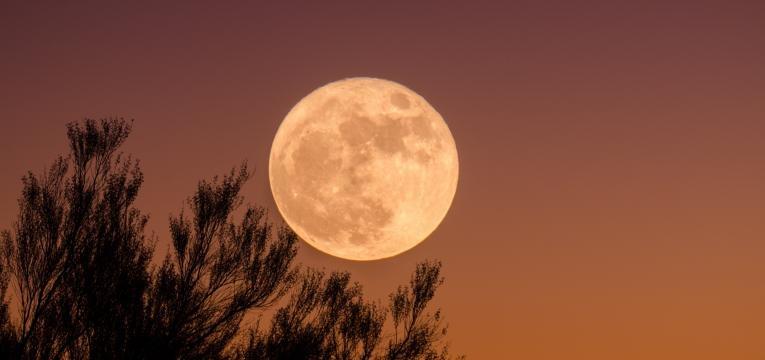 pleine lune dans le nuit