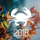 HORÓSCOPO 2018 - PREVISÕES CÂNCER