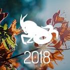 HORÓSCOPO 2018 - PREVISÕES CAPRICÓRNIO