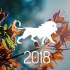 HORÓSCOPO 2018 - PREVISÕES LEÃO