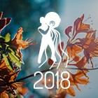 HORÓSCOPO 2018 - PREVISÕES AQUÁRIO