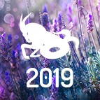 PRÉDICTIONS CAPRICORNE - horoscope 2019 gratuit