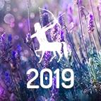 PRÉDICTIONS SAGITTAIRE - horoscope 2019 gratuit