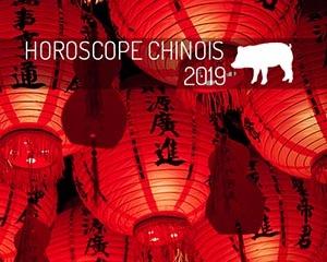 année chinoise 2019 : cochon