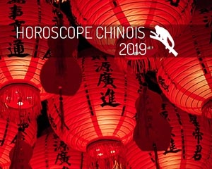 année chinoise 2019 : singe
